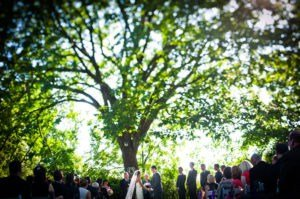Wedding Ceremony at FEAST at Round Hill (Matt Versweyveld)