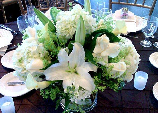 Greenery Plus Florist